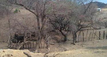 Costos del cambio climático en la región Tierra Caliente