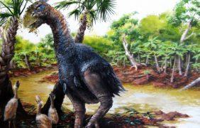 La Tierra puede volver a tener el clima de hace 50 millones de años dentro de un siglo
