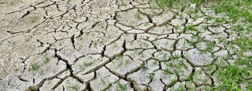 La adaptación al cambio climático avanza a un ritmo insuficiente a nivel global
