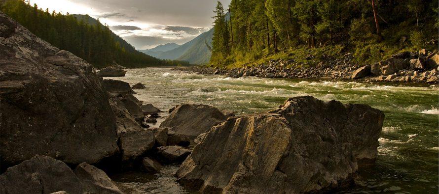 Ahorro de 436 millones de m3 de agua, 22 millones de kwh, inhibe 47 millones de toneladas en emisión de contaminantes