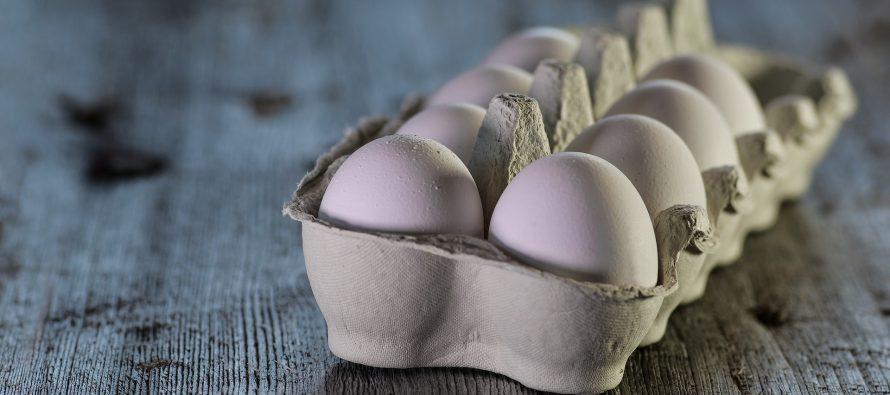 Los primeros huevos sin matar del mundo salen a la venta en Berlín
