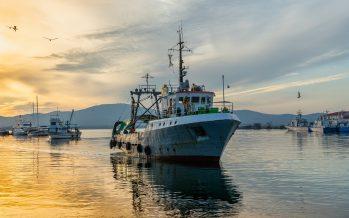 Los barcos pescan más dentro de las áreas protegidas que fuera de ellas