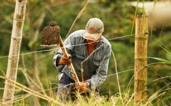 La Adaptación basada en ecosistemas y el bienestar humano en Mesoamérica