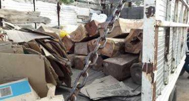 Aseguran camión con 1.819 m3 de madera de granadillo en Estado de México