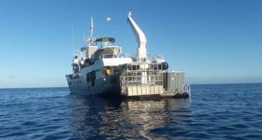 Atienden denuncia y aseguran embarcación en Área Natural Protegida