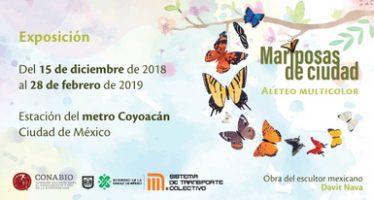 """Arte sustentable """"Mariposas de ciudad: aleteo multicolor"""""""