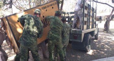 Traslado exitoso de dos jaguares al ZOOMAT en Chiapas