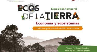 """Exposición temporal """"Ecos de la tierra"""""""