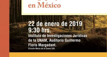 Libre determinación y Consulta indígena en contextos de megaproyectos en México