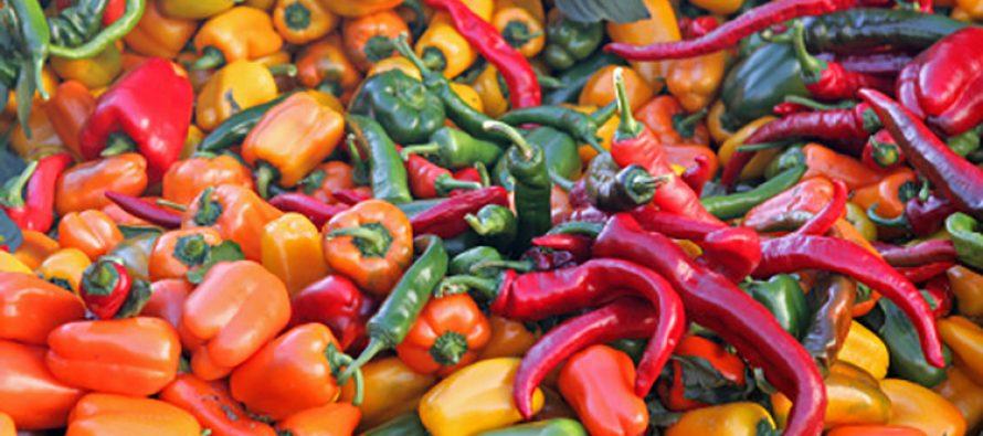 México es el origen de 64 variedades de chile, domesticados desde tiempos prehispánicos