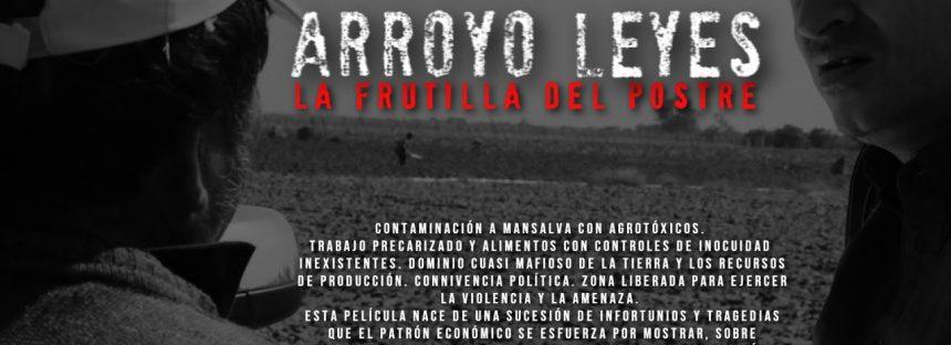 La Frutilla del Postre: el caso Arroyo Leyes