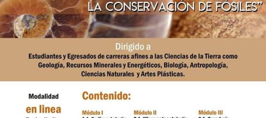 "Diplomado en paleontología ""Técnicas especializadas en la conservación de fósiles"""