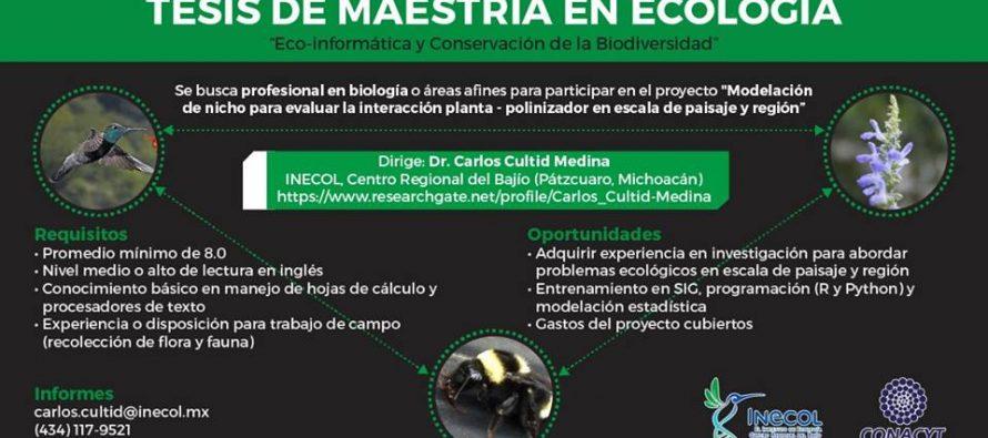 Tesis de maestría en ecología