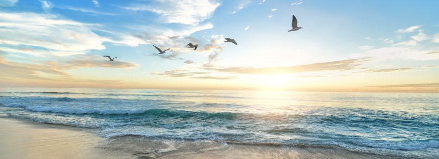Mares Limpios: dos años de la campaña líder contra la contaminación por plásticos