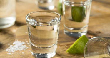 El mezcal en Sonora, México, más que una bebida espirituosa. Etnobotánica de Agave angustifolia Haw