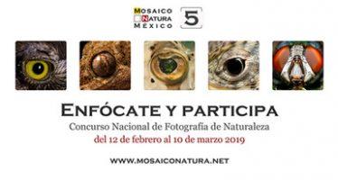 5º. Concurso Nacional de Fotografía de Naturaleza