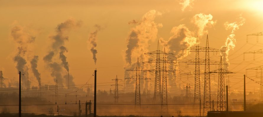 Ley de cambio climático: camino a la descarbonización