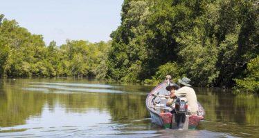 II Foro de Manglares de Honduras: avances y desafíos de los humedales y manglares
