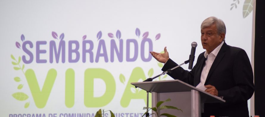 "Presenta AMLO programa ""sembrando vida"""