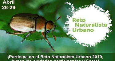 Reto naturalista urbano 2019