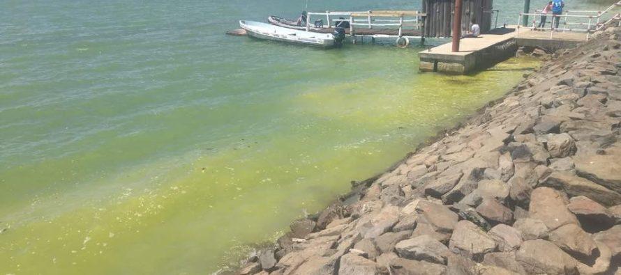 Denuncian niveles alarmantes de contaminación en el lago de Zirahuén
