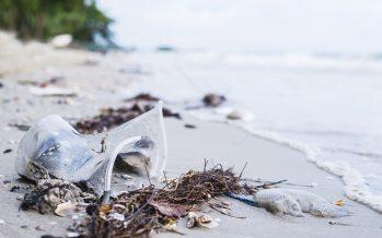 El efecto Blue Planet: la revolución de los plásticos es solo el comienzo