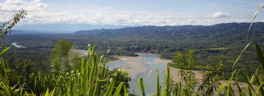 ONU Medio Ambiente hace un llamado enérgico a los Estados antes de la Asamblea para el Medio Ambiente