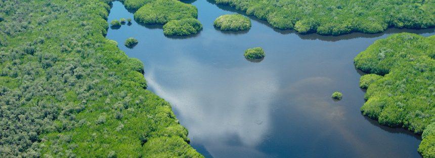 Gobierno mexicano impulsa esquemas voluntarios de áreas naturales protegidas