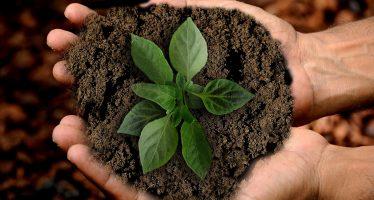 El mundo acuerda plan para llevar a nuestro planeta hacia un futuro sostenible