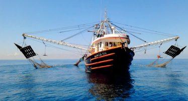 Listos lineamientos de operación del Programa de Fomento a la Productividad Pesquera y Acuícola