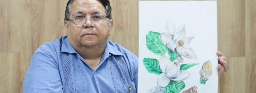 Identifican especie de magnolia en peligro de extinción