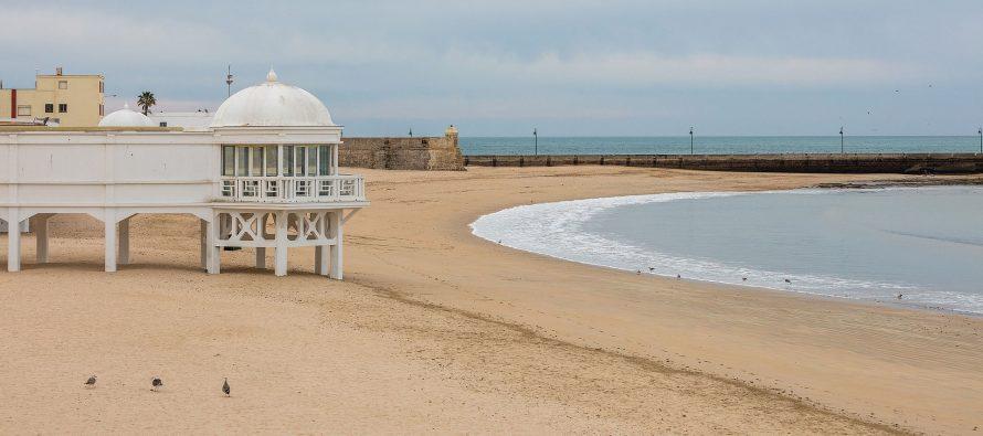 Descubren en una playa de Cádiz diez especies marinas nuevas para la Ciencia