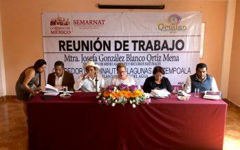 Combatirán tala ilegal en Ocuilan, Estado de México