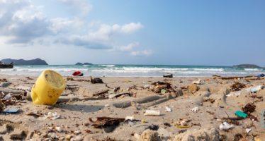 El Parlamento Europeo vota para prohibir los plásticos de un solo uso