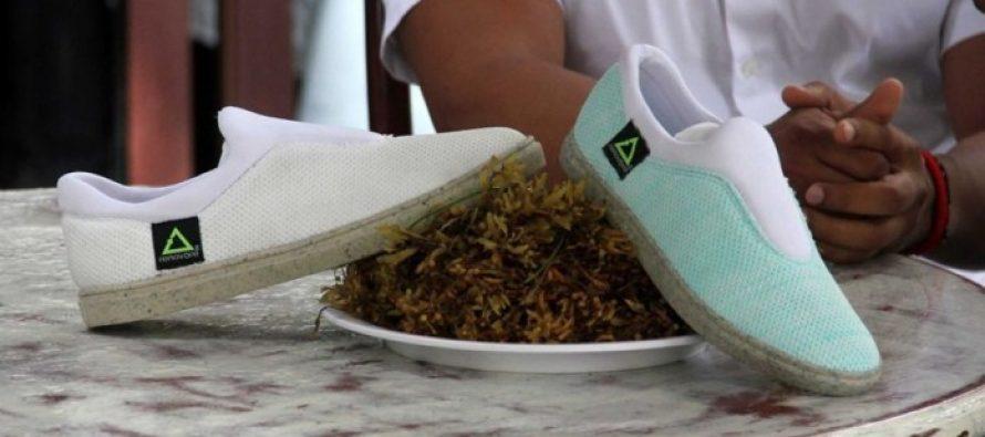 Calzado hecho a partir de sargazo es presentado en Cancún