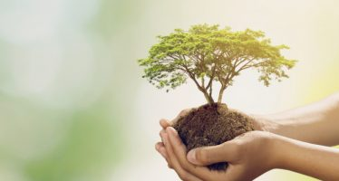 Día de la Tierra: protejamos las especies, cuidemos nuestra casa común