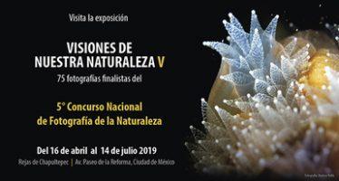 """Exposición fotográfica """"Visiones de nuestra naturaleza V"""", en las rejas del zoo de Chapultepec"""