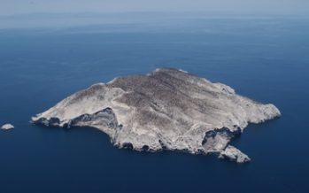 La Reserva de la Biósfera Isla San Pedro Mártir se incorpora a la Lista Verde de la UICN