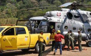 Alrededor de 87 incendios forestales activos en el país son atendidos por más de cuatro mil combatientes