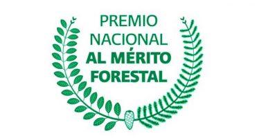 Premio Nacional al Mérito Forestal 2019 suma tres nuevas categorías