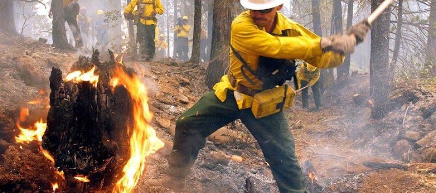 Despliegan más de 3,800 brigadistas para fortalecer el combate de incendios forestales