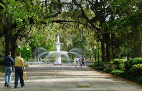 Nuestras ciudades necesitan más purificadores de aire naturales