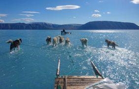 El drama del deshielo de Groenlandia en una sola foto