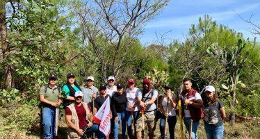 Urge ampliar el área natural protegida El Punhuato, que forma parte del Biocorredor Cultural del Centro – Occidente: Cristina Portillo