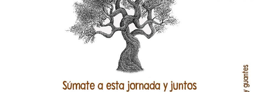 Morena reforesta el Punhuato