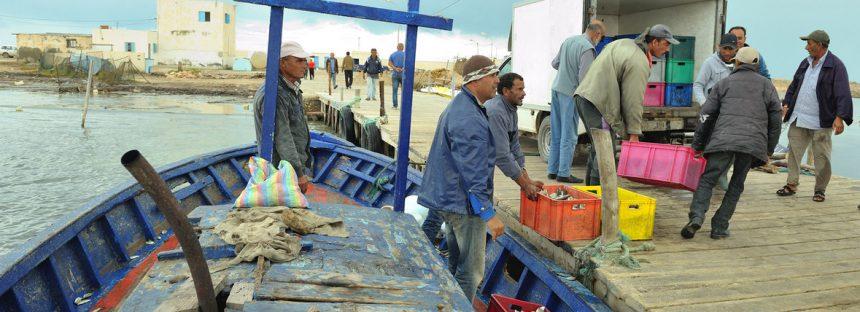Rápida adopción del tratado contra la pesca ilegal