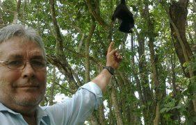 Condenan el asesinato del ambientalista José Luis Álvarez Flores