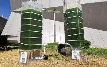 Biotecnólogos de la UANL crearían parque de captura de gases nocivos en Monterrey, para eliminar contaminación del aire