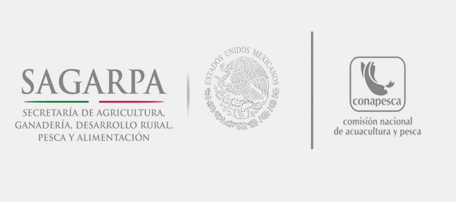 Comisión Nacional de Acuacultura y Pesca: Informe de rendición de cuentas de conclusión de la administración 2012-2018
