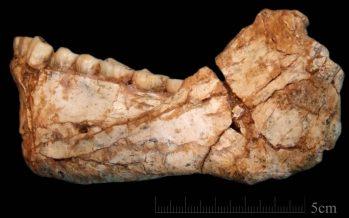 Hallados en Marruecos los restos de los primeros 'Homo sapiens'